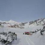 Leben im Schnee